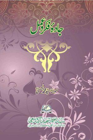 Jadah-Fikro-amal - جادۂ فکر و عمل